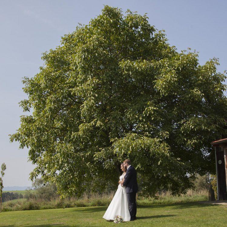 Hochzeitsfotograf Wien Preise